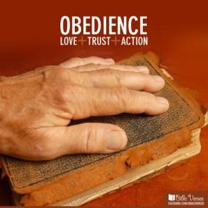 obedient-500x500