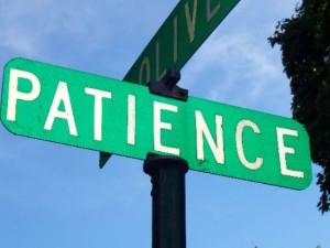 384110_4480-patience4